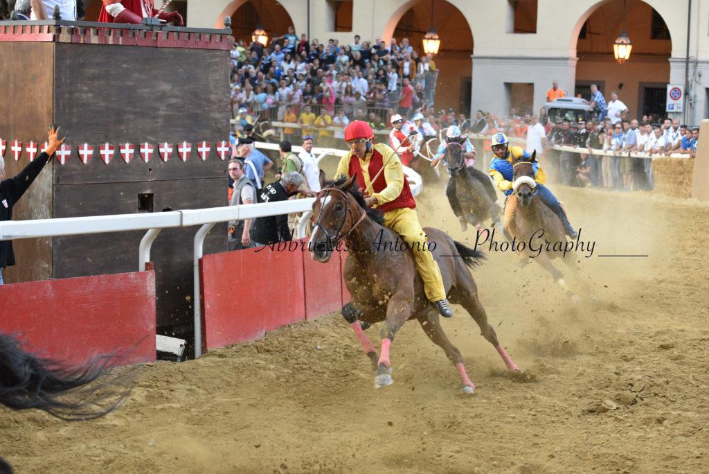 CavalloCattedrale SfilataCorsaPalio2016-1238